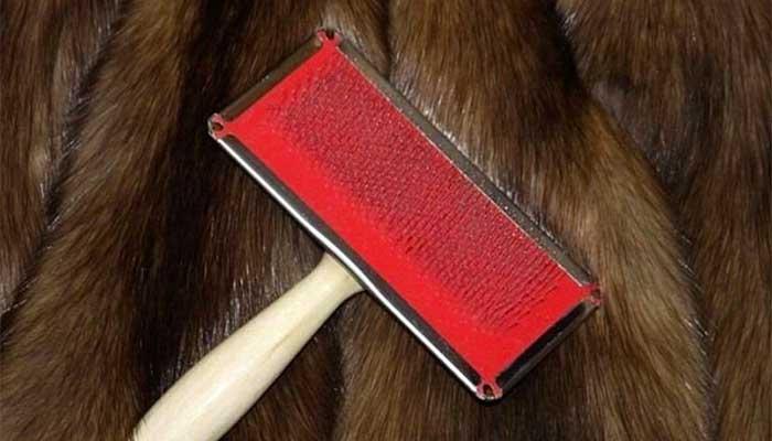 Вычёсывание меха енота