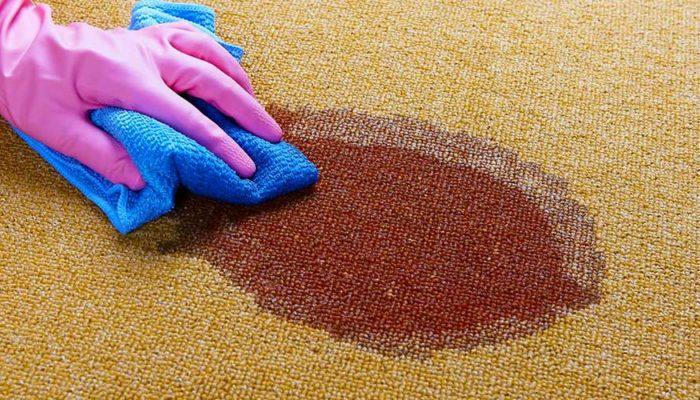 Кровь на ковре