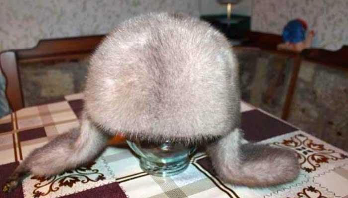 Белая норковая шапка